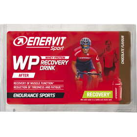 Enervit Sport Recovery Drink Box 20x50g Universal